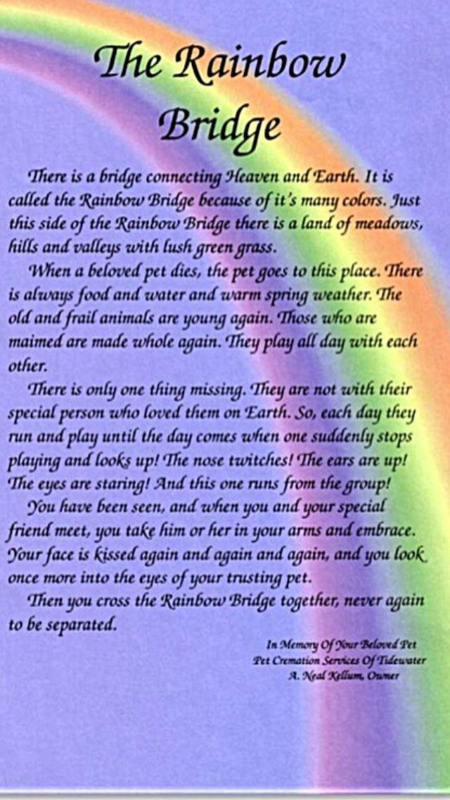 rainbow bridge pet poem printable Google Search