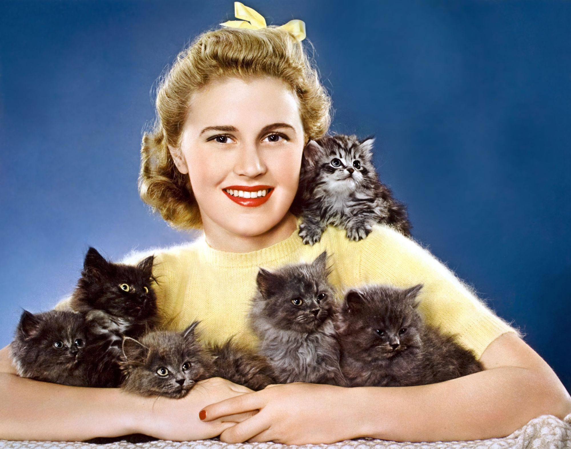 Joan Caufield Annex Cats Cat People Crazy Cats