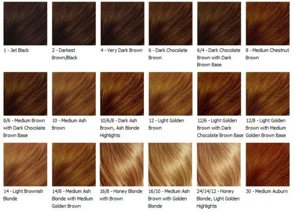 Honey brown hair color has been a trend many times because of the – Sample Hair Color Chart