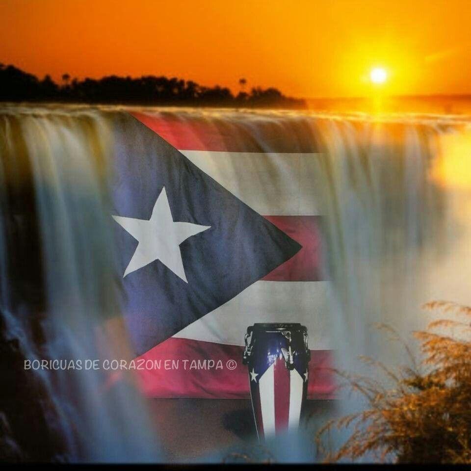 Puerto Rico Puerto Rico Art