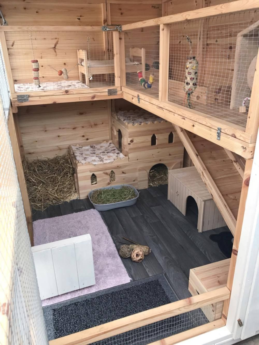 A Fantastic Set Up Here For Bunnies To Have So Much Fun In