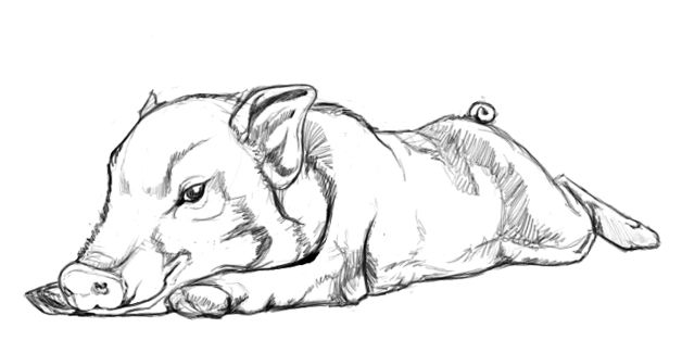 Sketch: OINK. by Reuxlette.deviantart.com on @deviantART