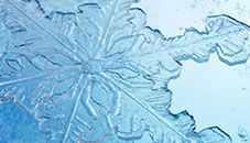 Themes Microsoft Windows Snowflake Wallpaper Winter Wallpaper Wallpaper