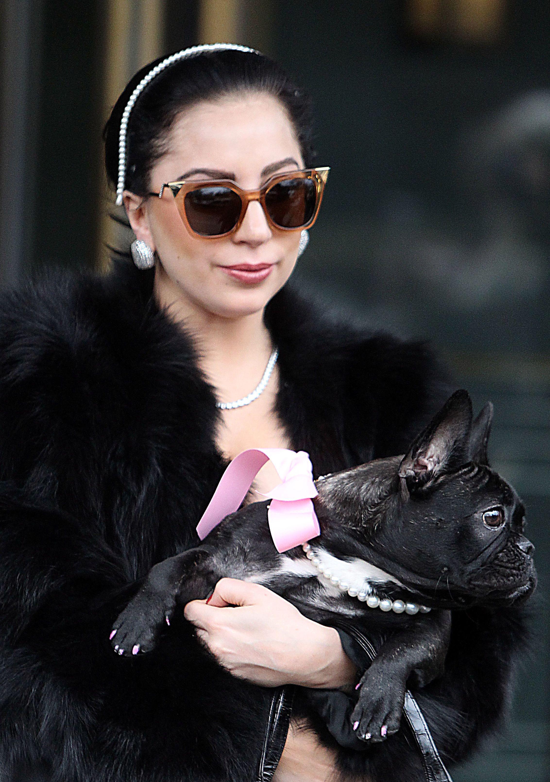 4d07f34adf Lady Gaga Fendi Sunnies