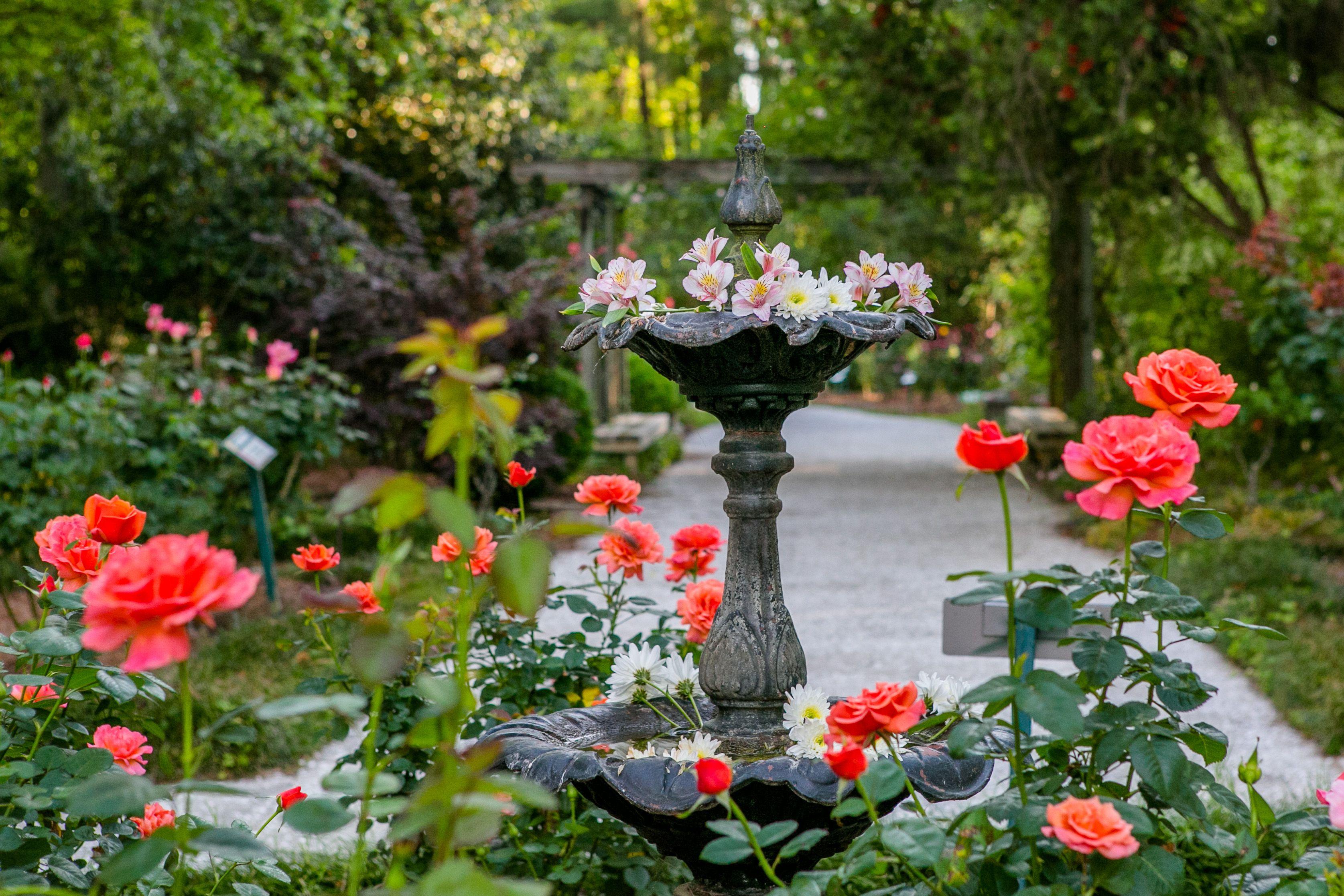 fec27319da7e313b1508b5c05f532283 - How Much Are The Botanical Gardens
