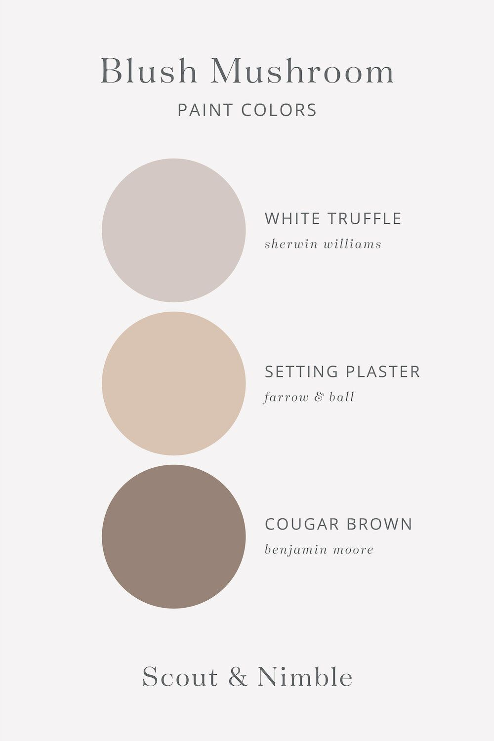 45+ Colours that go with mushroom colour inspirations