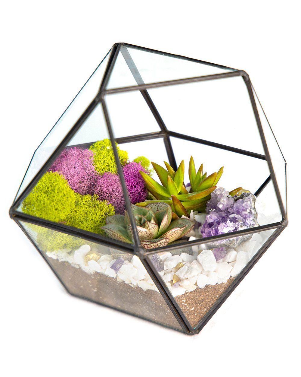 "Photo of 7""x6"" Geo Glass Succulent Terrarium with Metal Stand, Moss, Rocks, Amethyst *DIY Live Plant Terrarium Kit* – Green/Gold / Amethyst Geode"