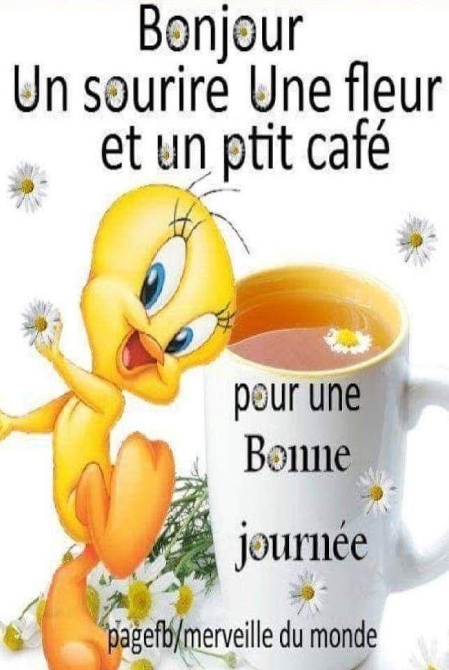 Epingle Par Lyon Sur Bonne Journee Bonne Journee Humour Bonjour Et Bonne Journee Bonjour Humour