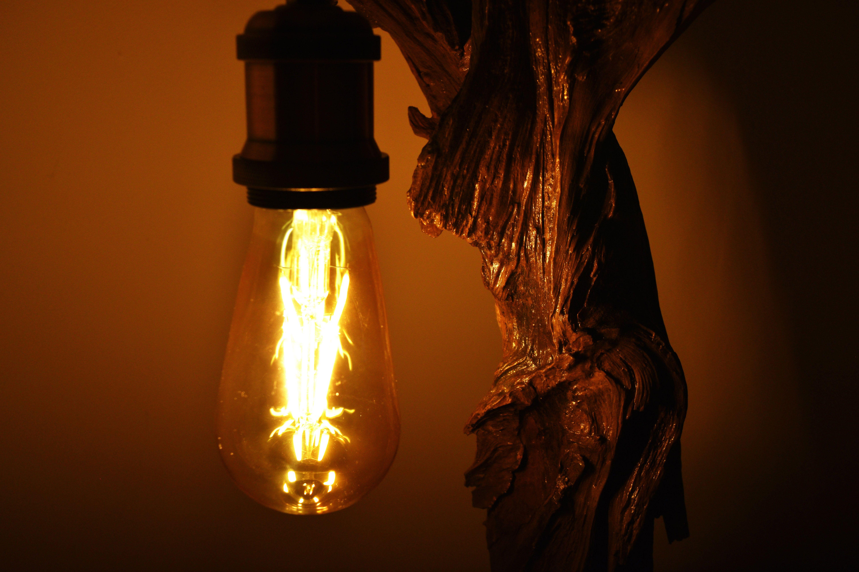 Driftwood Edison Lamp Bedside Lamp Night Wood Lamp Vintage Edison