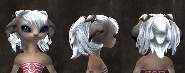 Gw2 Asura Hairstyle I Love All Of My Asura Hair Styles Pinterest