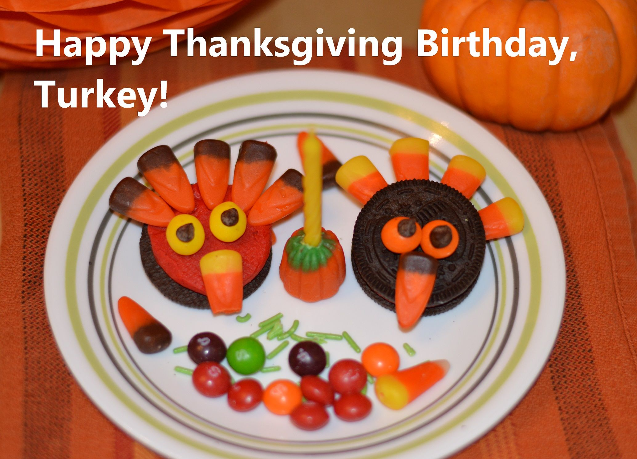Happy Thanksgiving Birthday Turkey Counting Candles