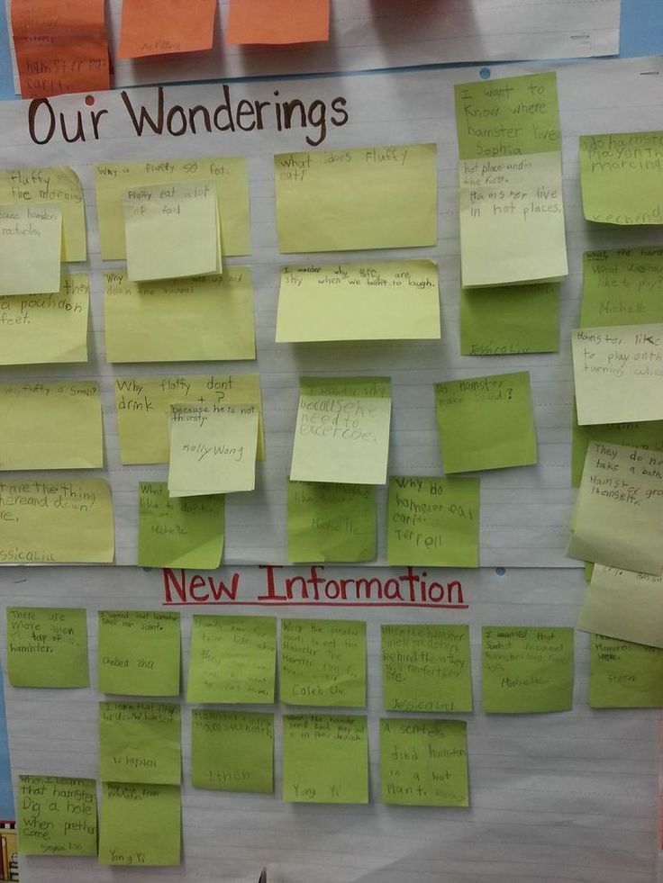 Really cool post about inquiry based learning