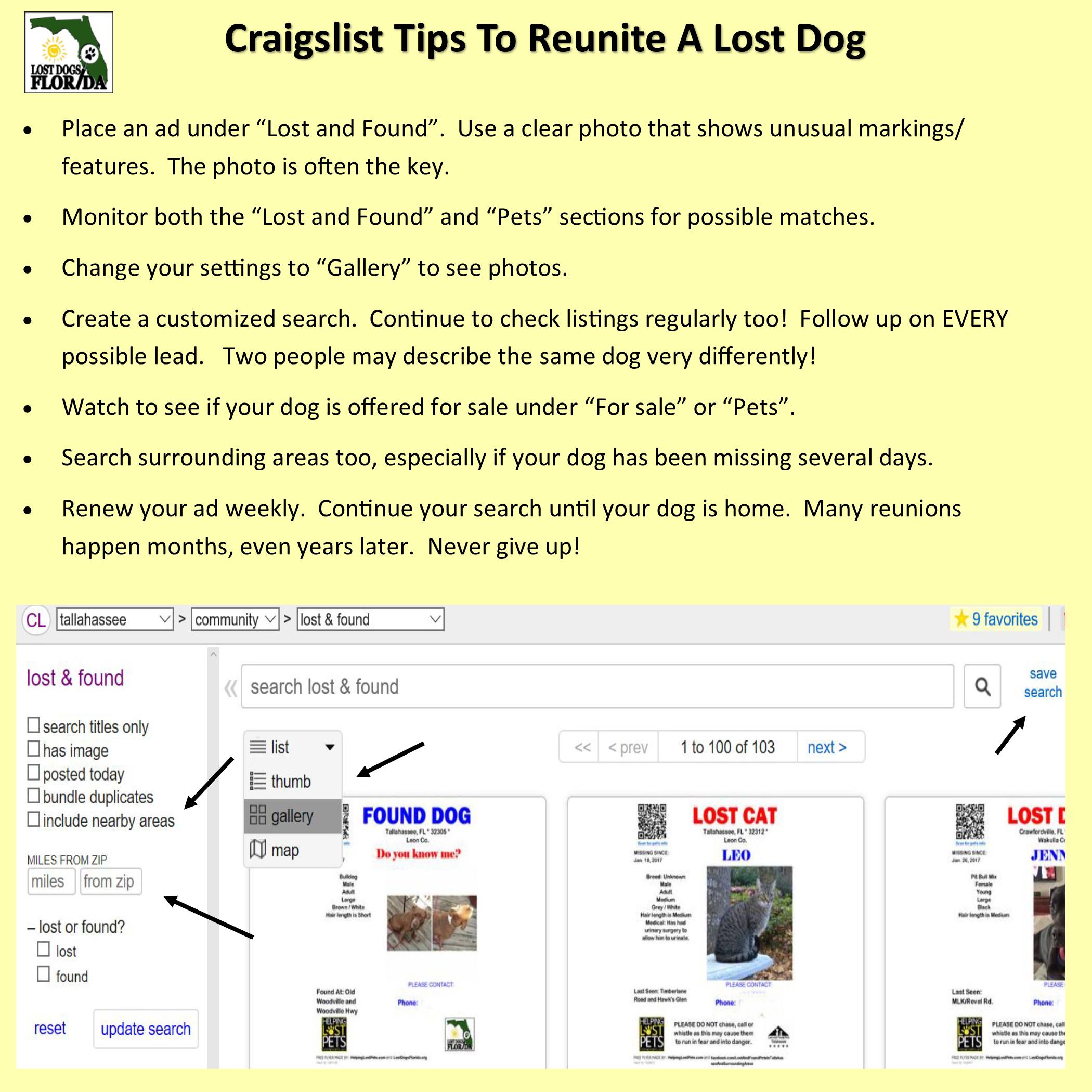Craigslist tips to reunite a lost dog | Losing a dog ...
