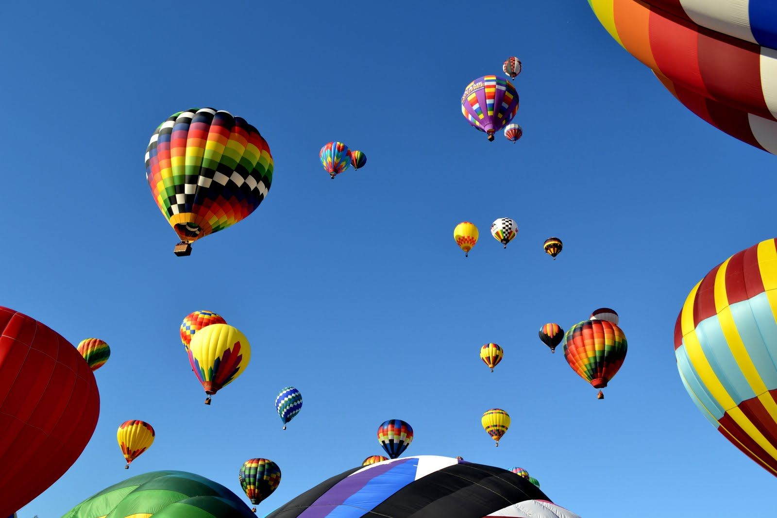 Carolina Balloon Fest Photo By Peggy Johnson My photos