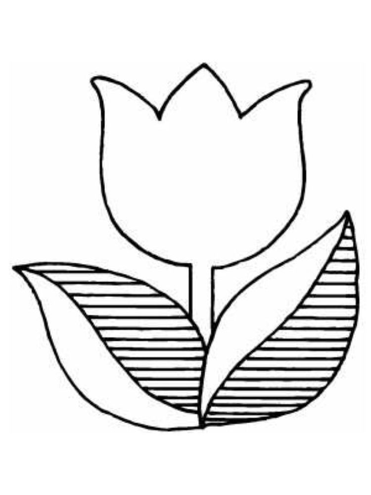 Coloring Pages Tulip Printable Coloring Pages Coloring Pages Flower Coloring Pages