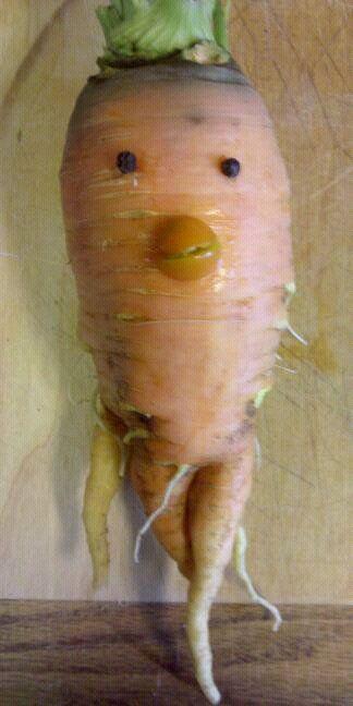 My crazy carrot