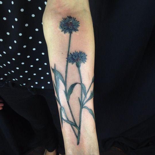 Cornflower Tattoo idea