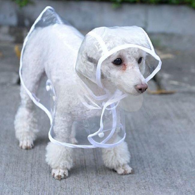 Waterproof Padded Fleece Dog Coat Price 40 99 Free Shipping Puppylove Lovn Love Doggo Bestfriend In 2020 Dog Winter Clothes Waterproof Dog Coats Winter Dog