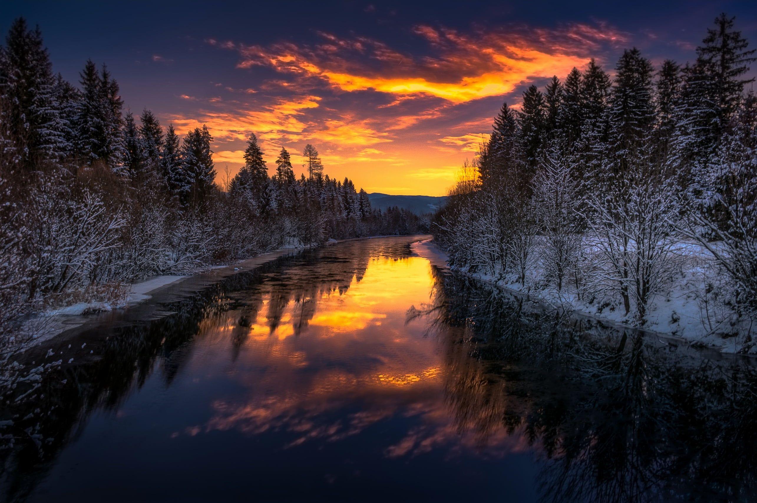 Lake Between Pine Trees, Dark, Landscape, Sky, Sunlight