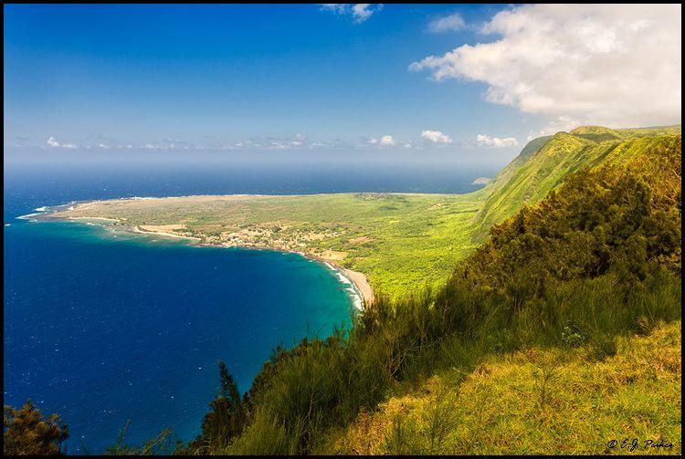 Leper colony, Molokai | Molokai/Father Damien | Pinterest
