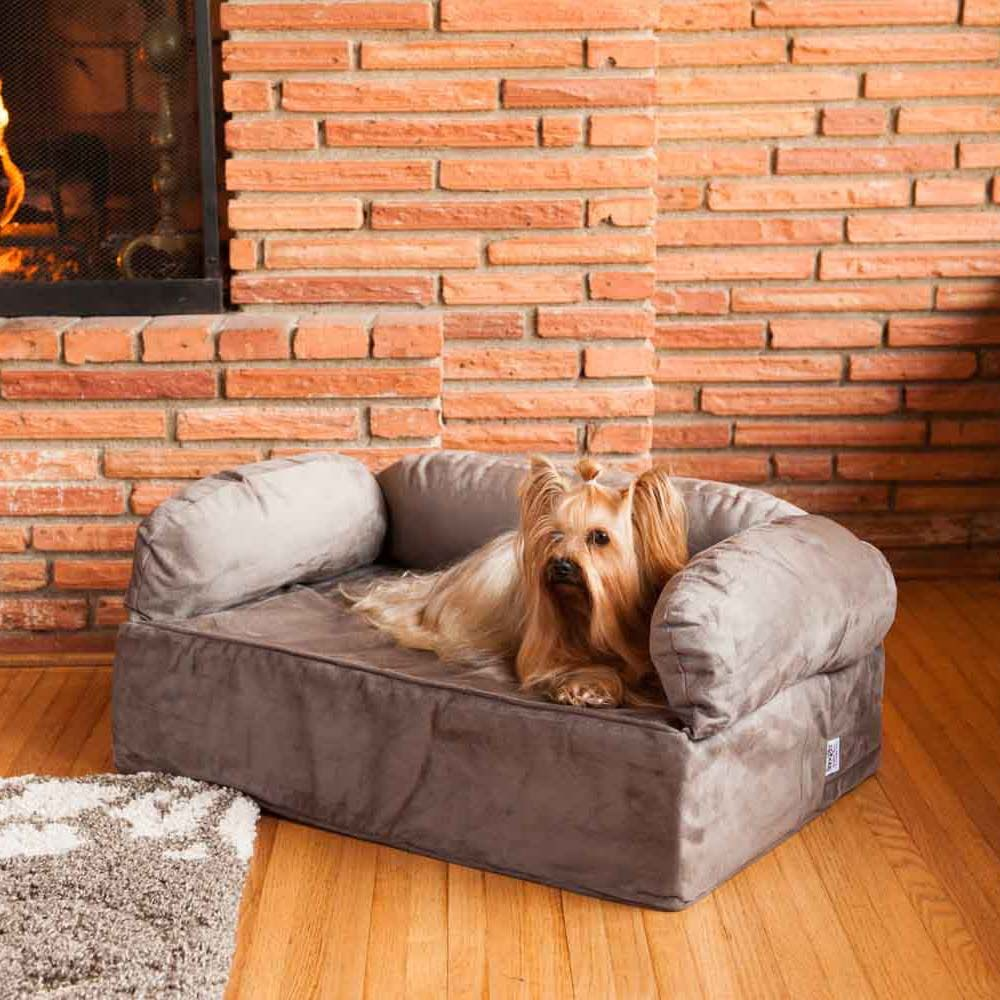 Fine Snoozer Luxury Dog Sofa With Memory Foam Pet Couch Download Free Architecture Designs Fluibritishbridgeorg