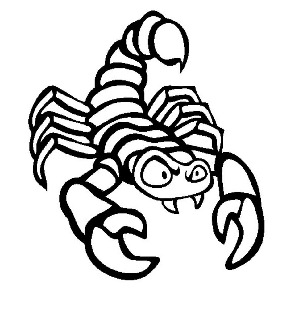 Free Printable Scorpion Coloring Pages For Kids Animal Coloring Pages Adventure Time Coloring Pages Coloring Pages To Print