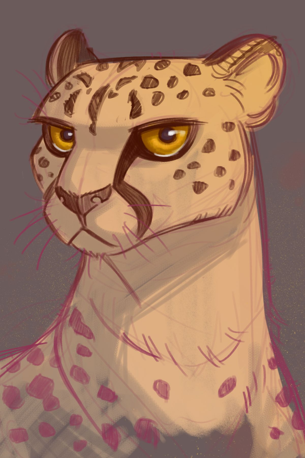 Daily Cat Drawings — 080 Ranger Went to the zoo today and