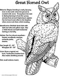 Colouring Page Of A Great Horned Owl
