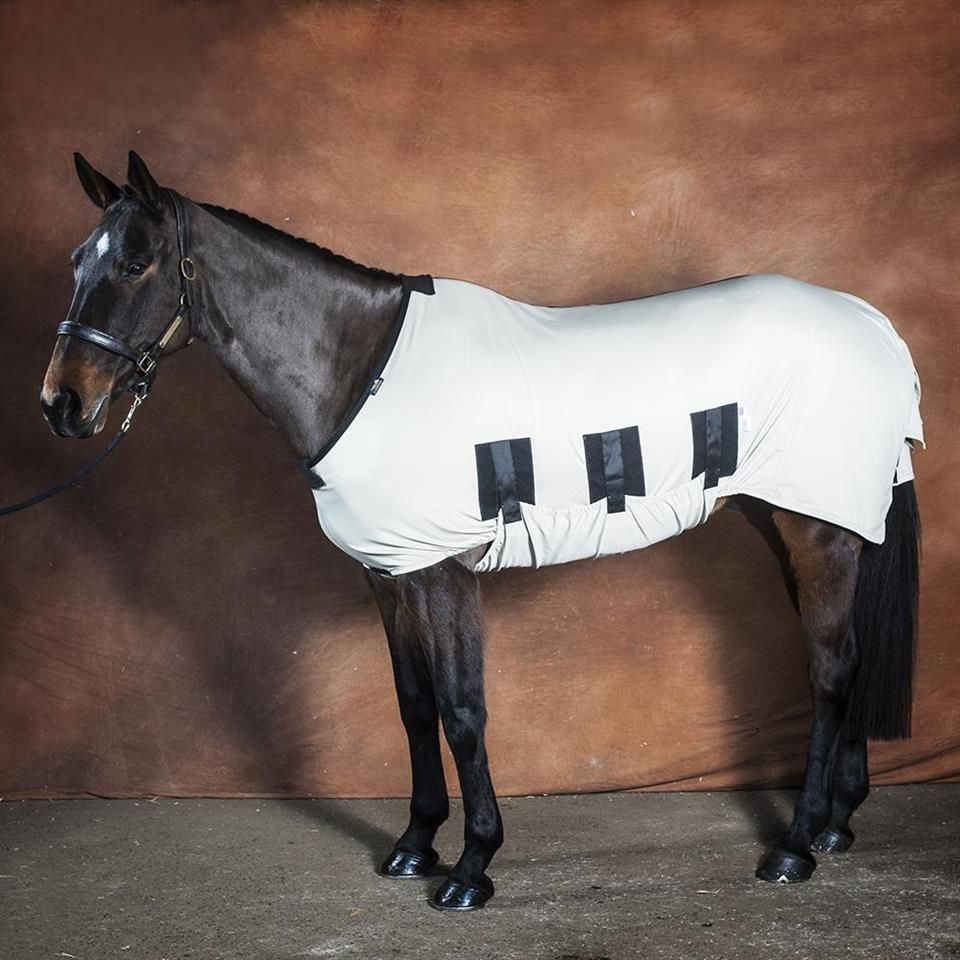 Stop Summer Allergies In Horses Snuggy Bug Body For The