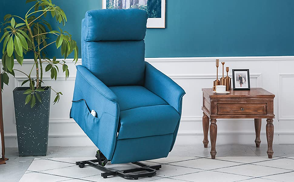 Amazon.com: ERGOREAL Electric Lift Chair for Elderly ...