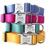 Personalized Dog Collars. No more tags making noise!