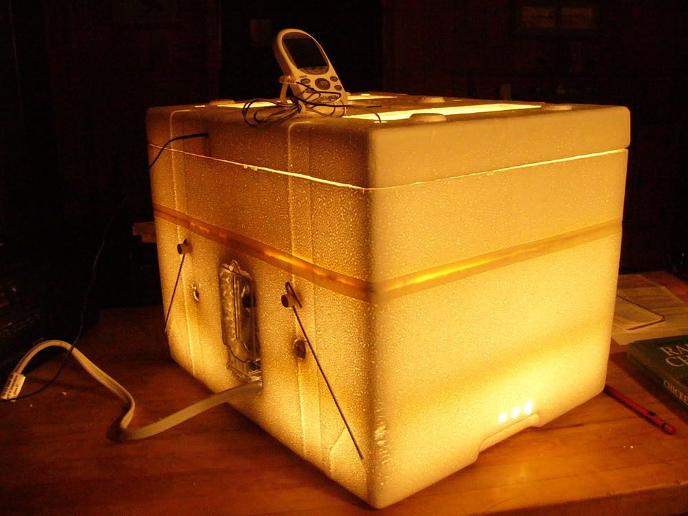 A neat & tidy homemade egg incubator from simple and