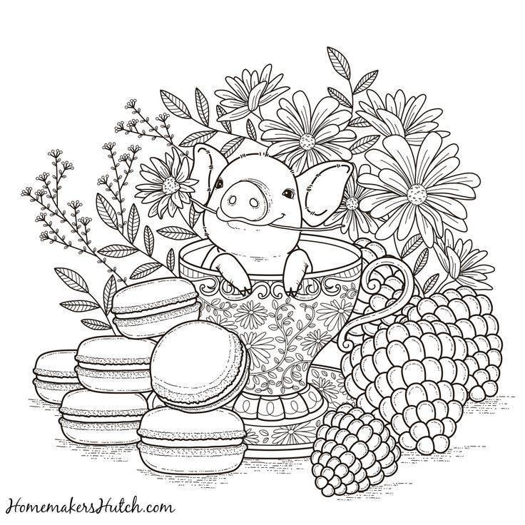 Pig In A Tea Cup Adult Coloring Page Coloring Books Animal