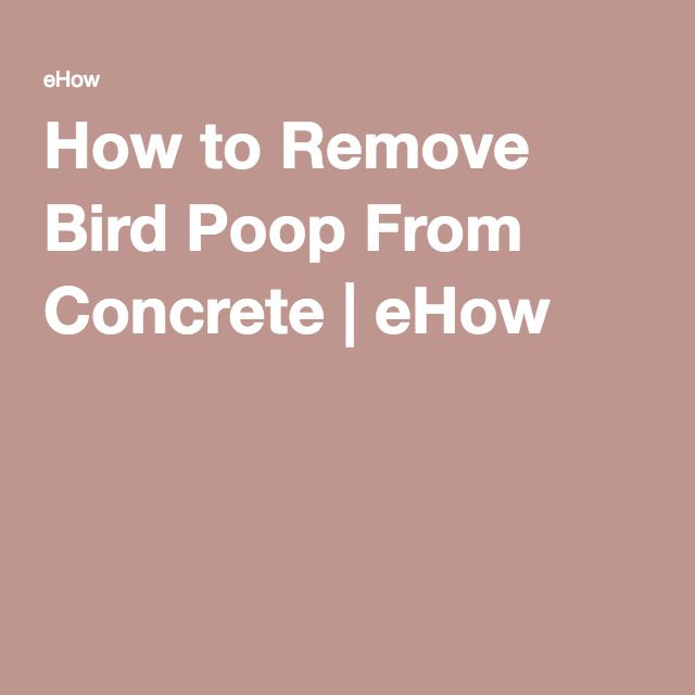 How to Remove Bird Poop From Concrete | eHow