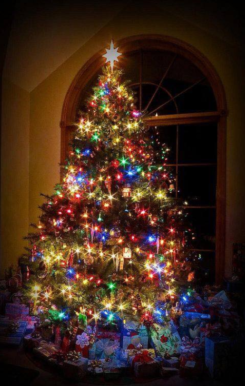 Pin by Karen Richards on The Holidays Colorful christmas