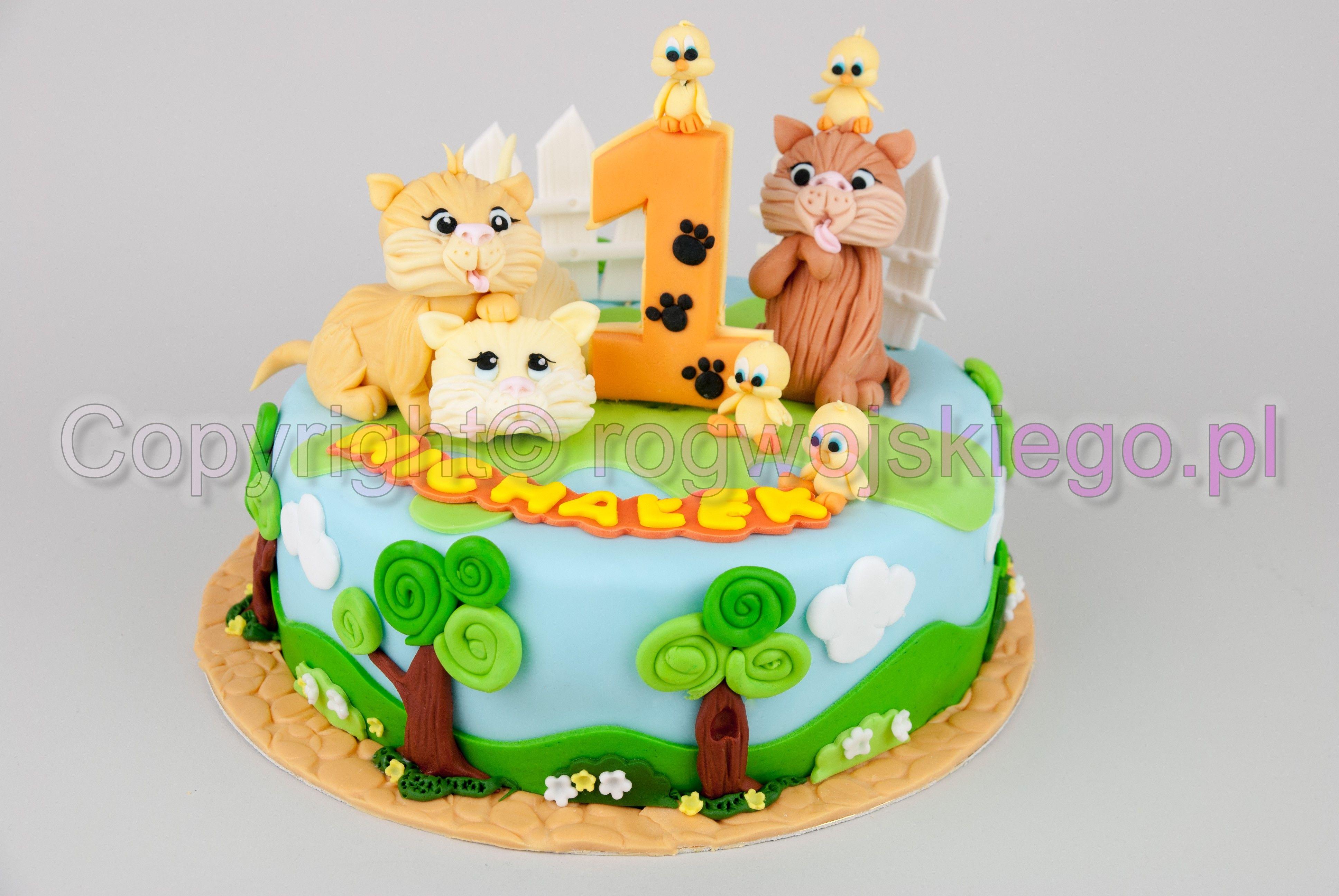Tort Na Roczek 1st Birthday Cake Gdansk Siedlce Chelm Wrzeszcz Oliwa Zaspa Morena Www Rogwojskiego Pl Farm Cake Cake Desserts