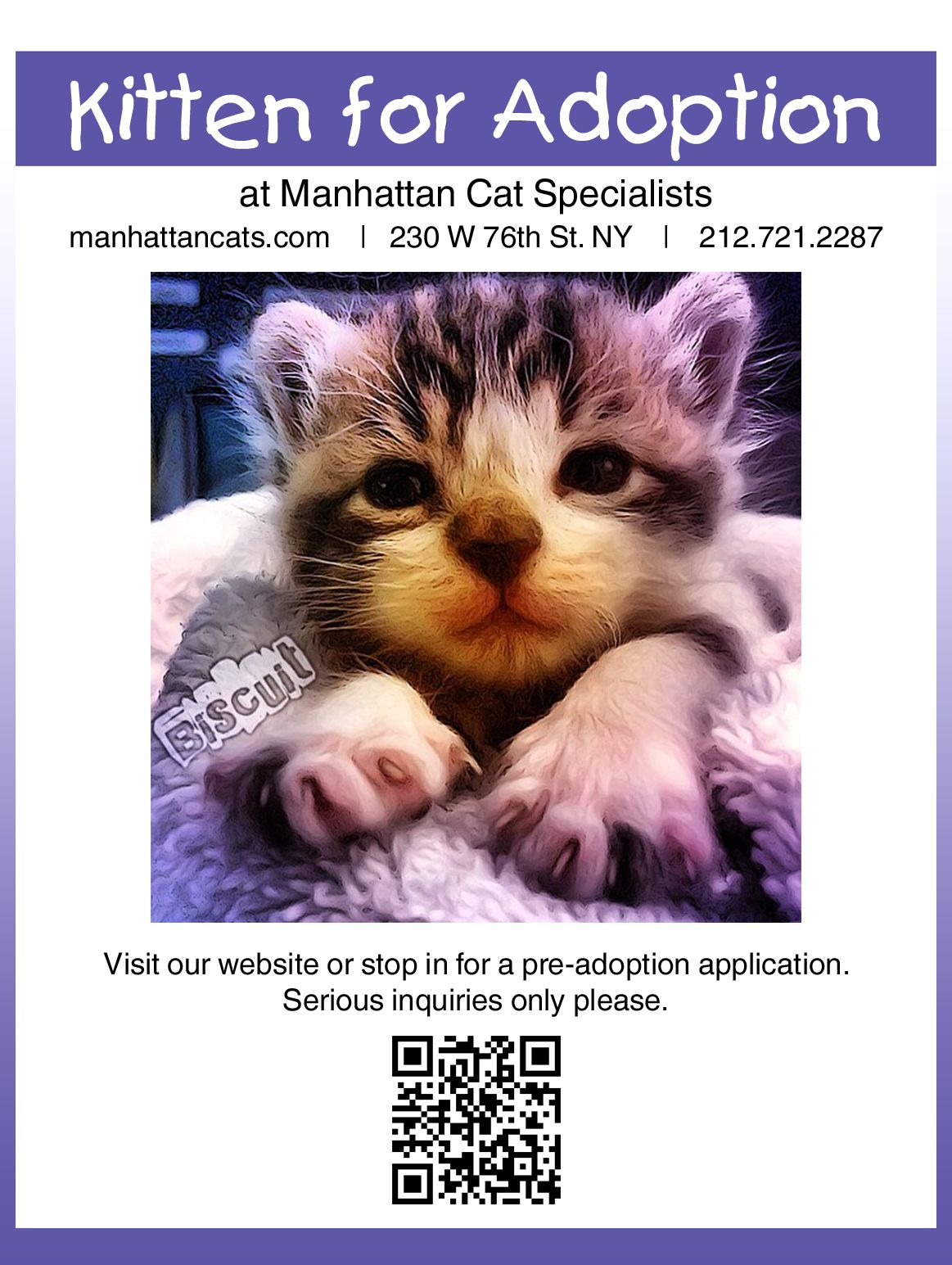 New York City Feline Care Clinic Upper West Side Pet