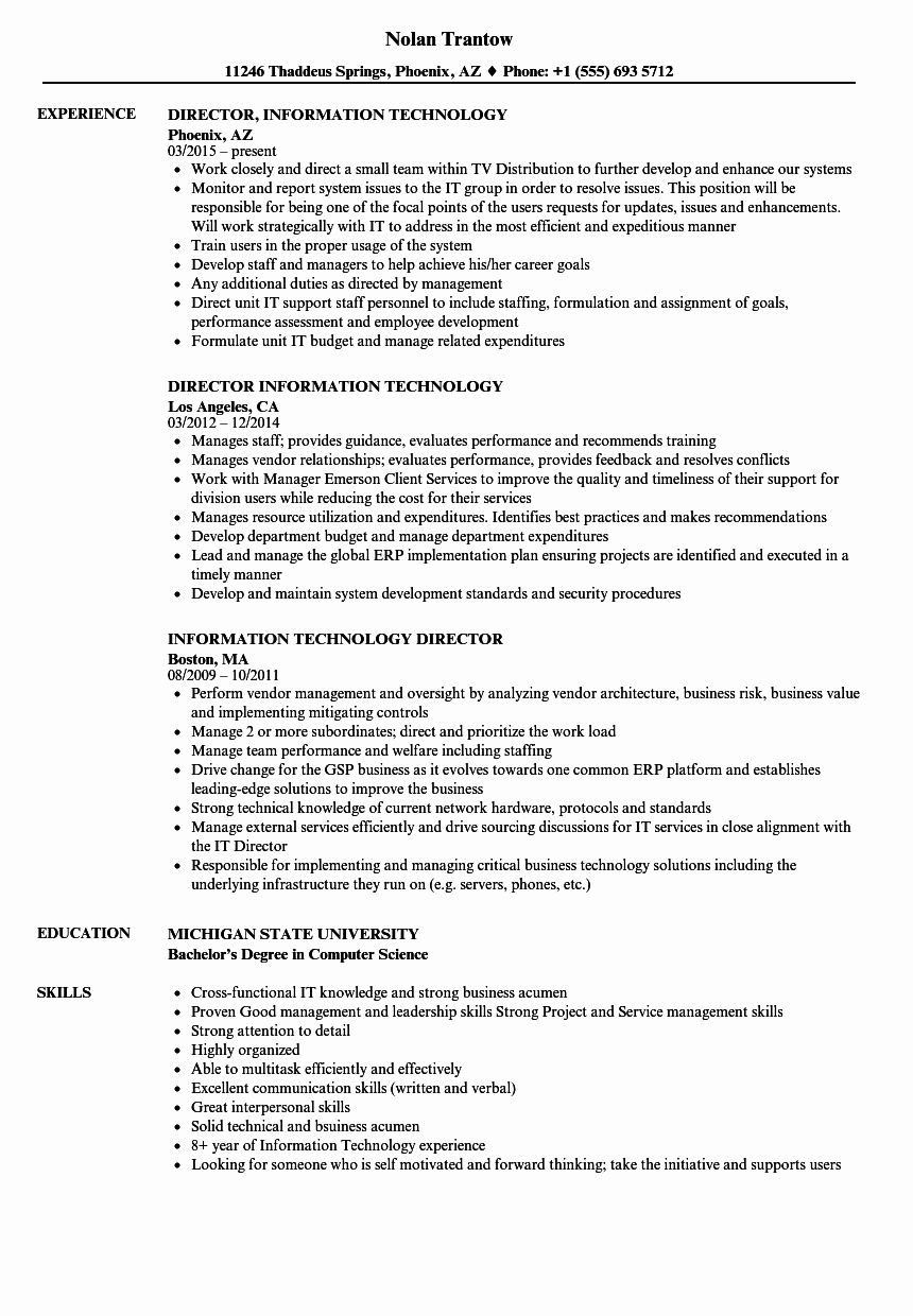Information Technology Manager Resume Examples Luxury