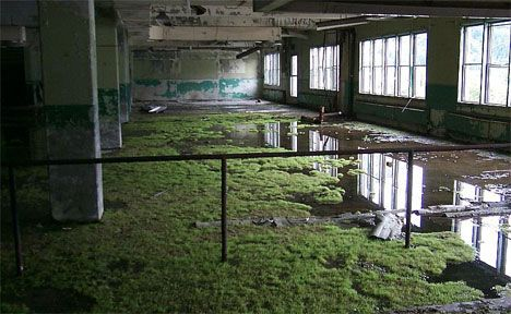 Abandoned Wonders of America: From Deserted Breweries to Famous Auto Factories | WebUrbanist