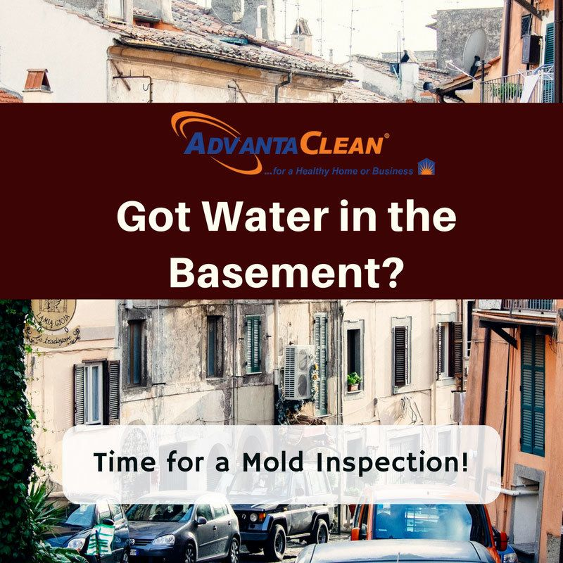 got water in the basement time for a mold inspection water rh pinterest co uk