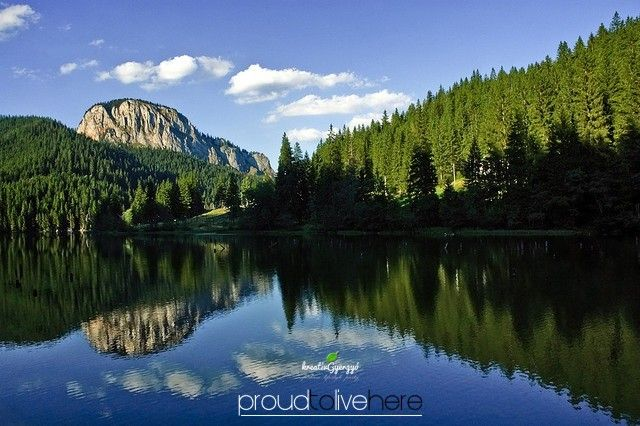 #gyergyoszentmiklos #gheorgheni #lacu rosu #lacul rosu #gyilkosto #transylvania #szeklerland #kreativgyergyo #wood #woods #lake #redlake #red lake