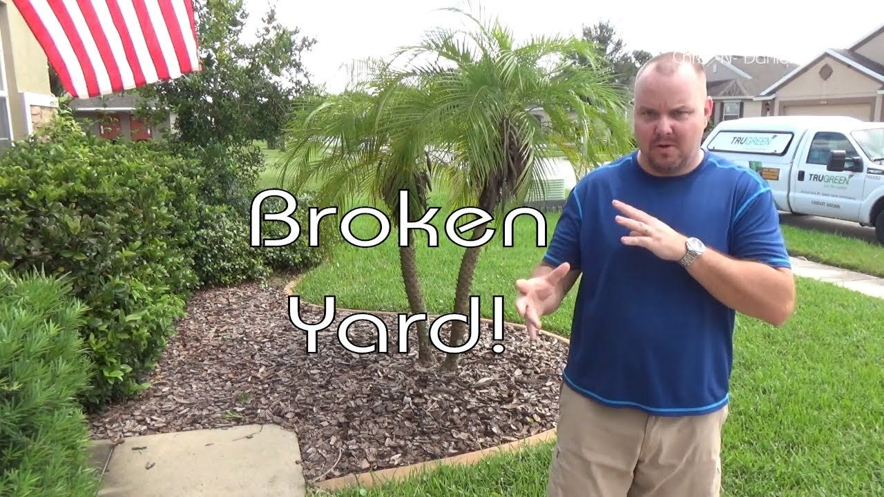 Remember that new grass we put don in our how to sod video