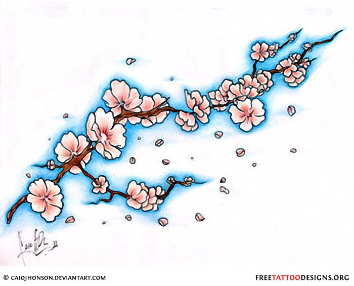 Cherry Blossom Tattoos And Designs Page 6 Blossom Tree Tattoo Cherry Blossom Tree Tattoo Japanese Flower Tattoo