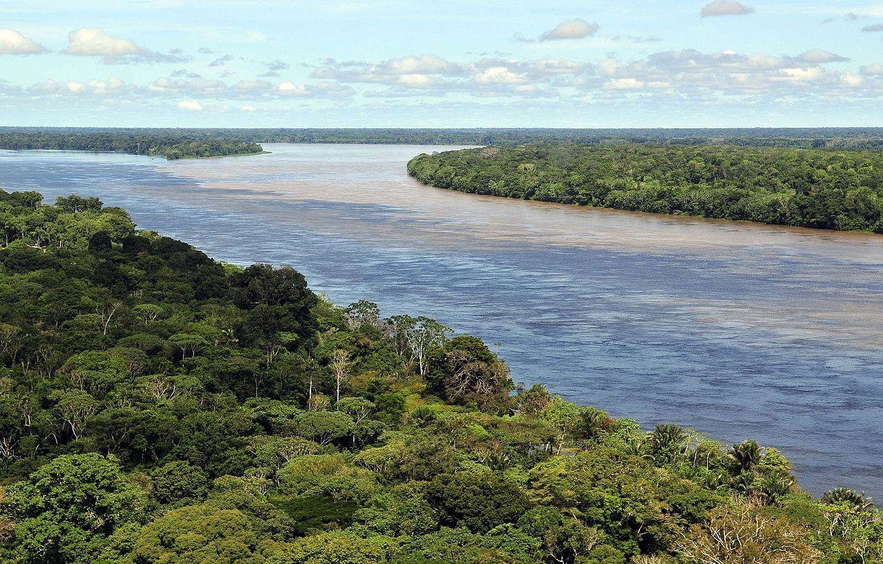 Amazon CIAT (2) - Amazônia – Wikipédia, a enciclopédia livre