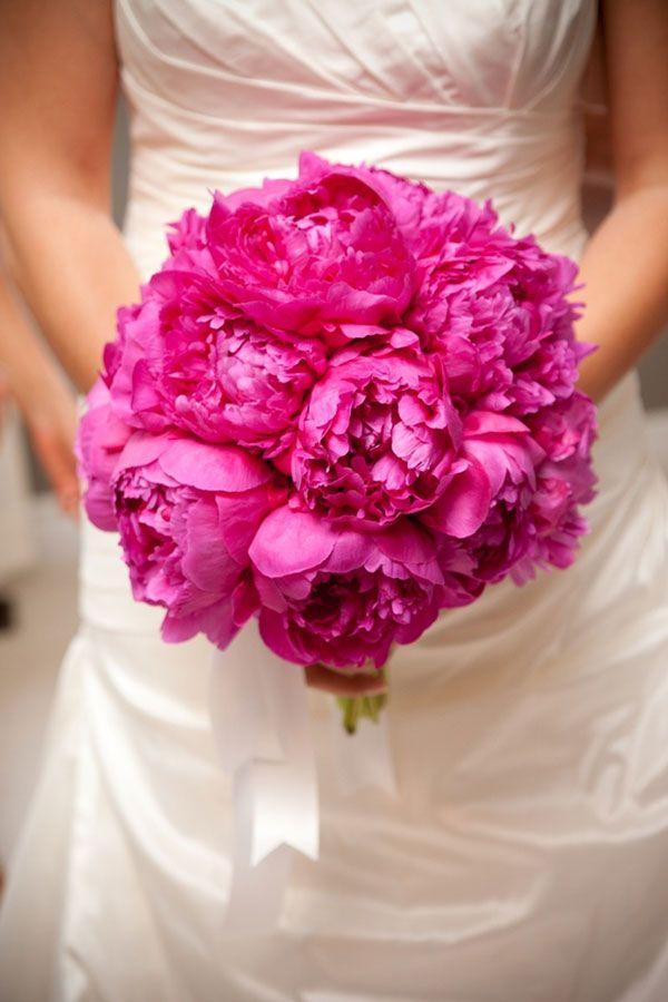la pivoine   bouquet de pivoines roses, bouquet de pivoine et