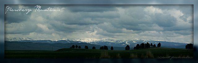 Strawberry Mountains Mountains Eastern Oregon John Day