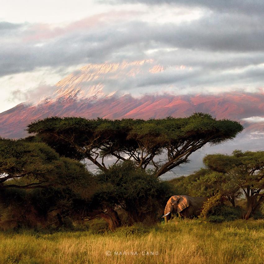 Кения красивые картинки