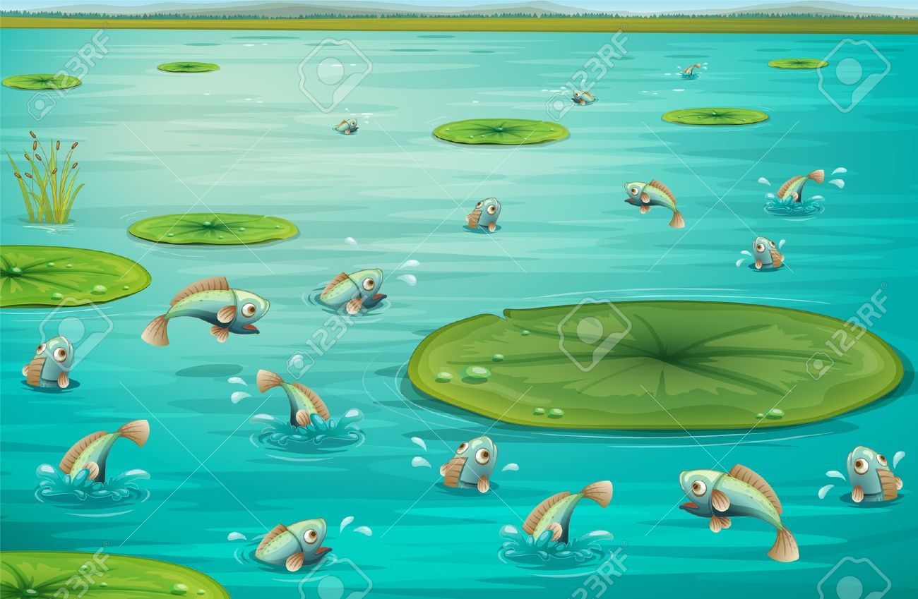 fish in the pond online dating Plagiarism rife on or internet personals site a few months later in the waikato river to shift from dating fish one  article failed to pond dating acknowledge .