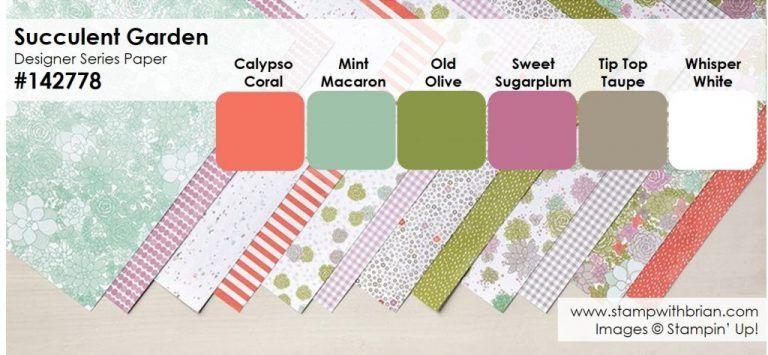 Succulent Garden DSP colors