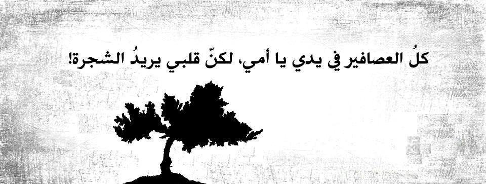 صور حكم مميزة عن الطموح Sowarr Com موقع صور أنت في صورة Arabic Calligraphy Lettering Wise Words